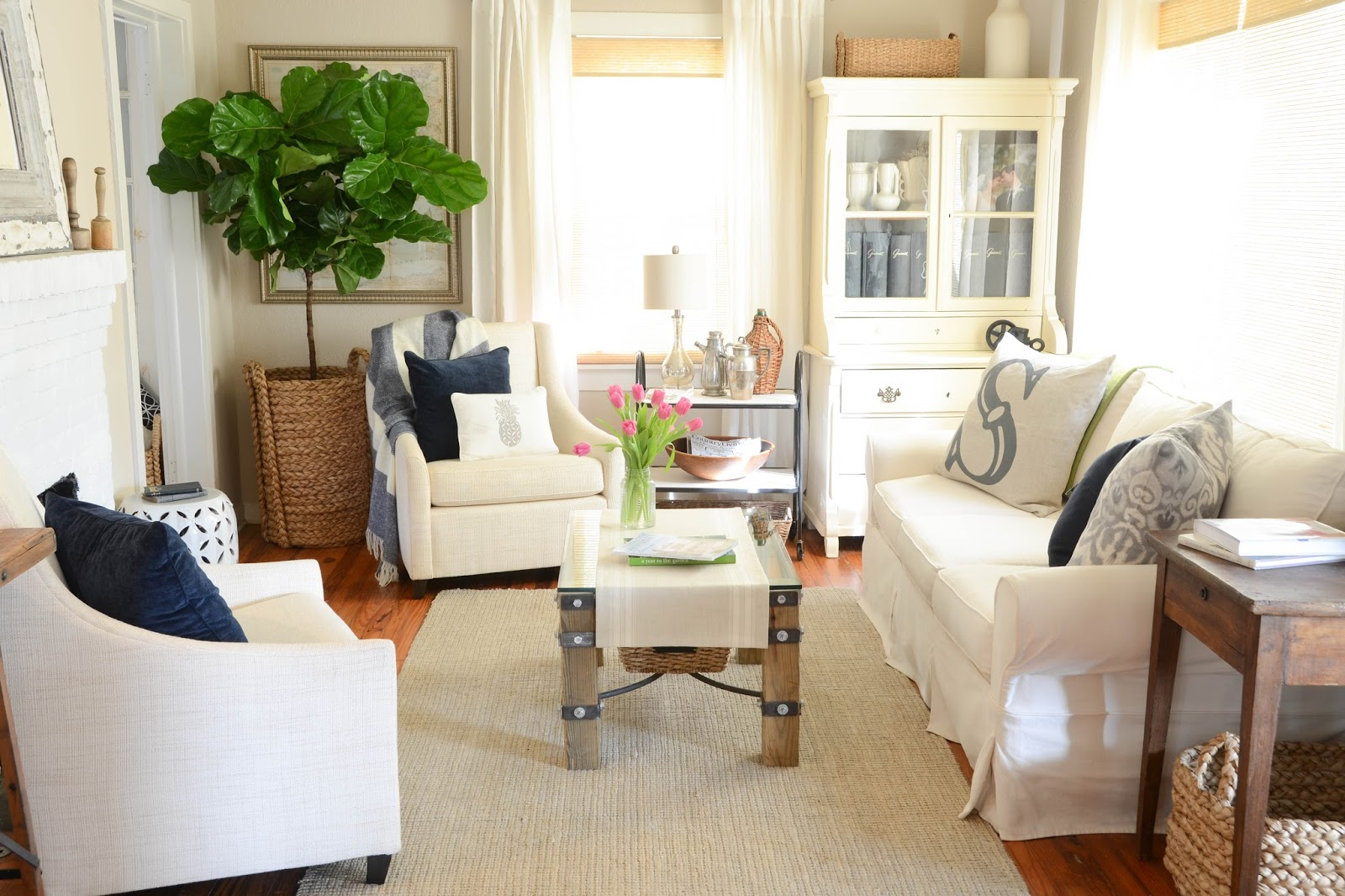 Fiddle Leaf Fig Tree (6)