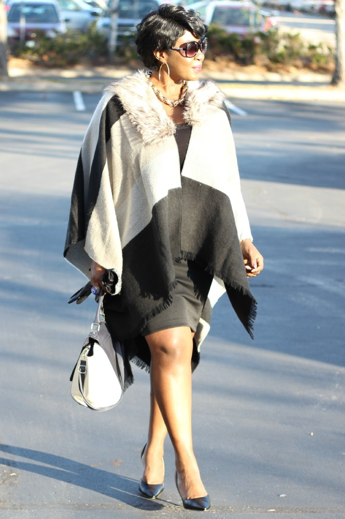 Gray and black Poncho Fur 23 jpg