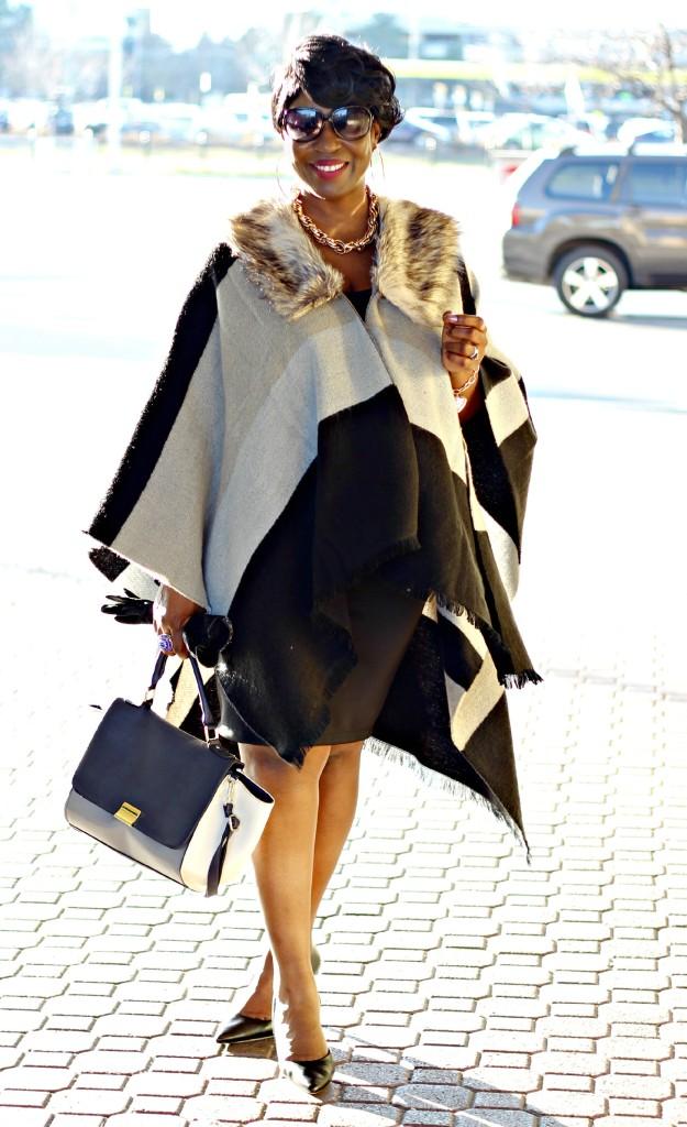 Gray and black Poncho Fur1 jpg