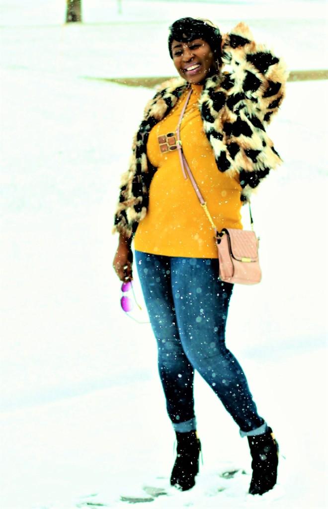 snow and fur 6